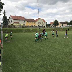 D-Junioren Bodelwitzer SV - Grün-Weiß Tanna 5:2 (0:1)