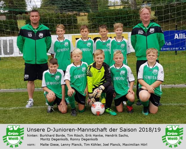 Pokal-HF Grün-Weiß Tanna - Carl-Zeiss Jena III 4:3 (3:3)