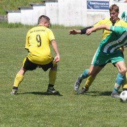 SV Fortuna Gefell - SG SV Grün-Weiß Tanna 0:3 (0:1)